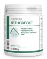 Suplement na stawy Horsemix Arthrofos Dolfos